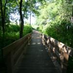 20110215 Arboretum Django2 008