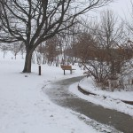 TRE_Arboretum, winter_Winding Path