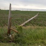 20170617 South Rural057_bellevue pole