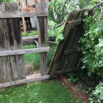 Fence Damage Photo