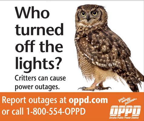 owl outage