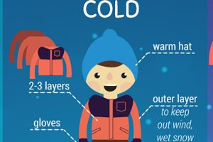 WEA_Wind chill_infographic_main